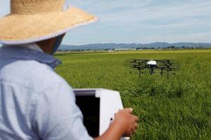 Nông nghiệp Nhật Bản trước tình trạng già hóa: Cứu tinh từ 4.0?