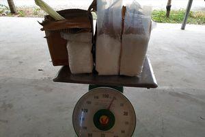CSGT phát hiện bắt giữ hơn 11kg ma túy