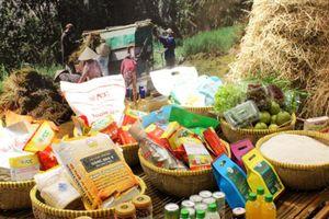 Quy định mới 'cởi trói' cho doanh nghiệp xuất khẩu gạo
