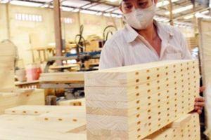 Thời cơ lớn của gỗ cao su