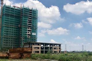 Huyện Thanh Trì (Hà Nội): Cần sớm thu hồi Dự án bệnh viện trăm tỷ bỏ hoang, lãng phí