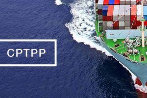 Cách thức tham gia 'Khảo sát đánh giá chất lượng doanh nghiệp Việt Nam hội nhập CPTPP'