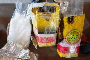 CSGT Thanh Hóa bắt 2 vụ vận chuyển hơn 11kg ma túy trong cùng một ngày