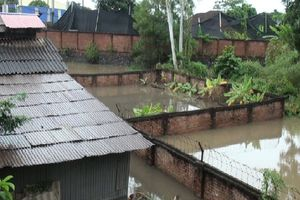 Phổ Yên: Dân khổ vì nước úng ngập lâu ngày