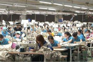 Các doanh nghiệp Việt gia tăng sản xuất dù lực cầu thị trường thế giới giảm