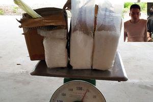 CSGT Thanh Hóa phát hiện 2 vụ ma túy 'khủng' 'kèm' súng, đạn