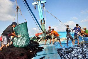 Việt Nam quyết ngăn chặn và chấm dứt khai thác hải sản bất hợp pháp