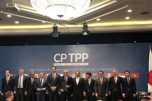 Nhiều nước hoan nghênh CPTPP sớm có hiệu lực