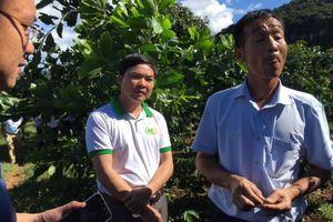 Cà phê Sơn La xuất khẩu sang nhiều quốc gia