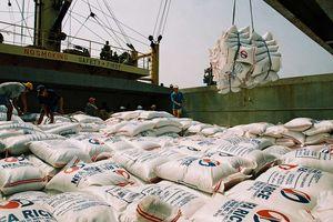 'Cởi trói' cho xuất khẩu gạo