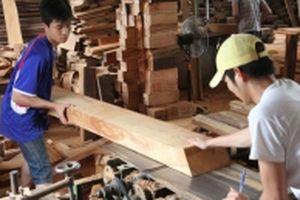 Hiệp định VPA/FLEGT: Rộng cửa cho gỗ Việt vào EU
