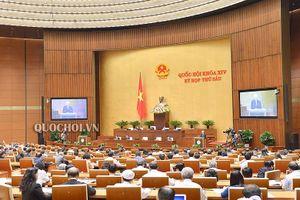 Tổng Bí thư, Chủ tịch nước trình Quốc hội xem xét Hiệp định CPTPP
