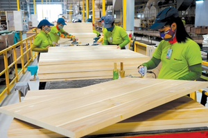 Năng lượng để sản xuất một đơn vị GDP của Việt Nam cao gấp 1,4 lần Thái Lan