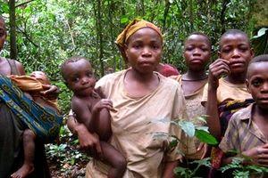 Pygmy: Tộc người 8 tuổi đã trưởng thành