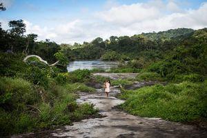 5 quốc gia nắm giữ 70% vùng hoang dã cuối cùng trên thế giới