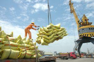 4.0 đã về từng thửa ruộng, ngành lúa gạo phải chuyển mình
