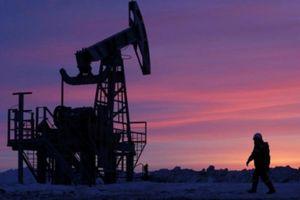 Lao dốc mạnh, giá dầu chạm đáy 7 tháng