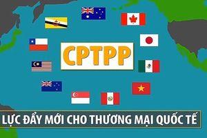 Sớm phê chuẩn CPTPP thể hiện cam kết mạnh mẽ về đổi mới và hội nhập