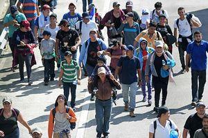 Hé lộ lý do người di cư chọn đi thành đoàn tới Mỹ
