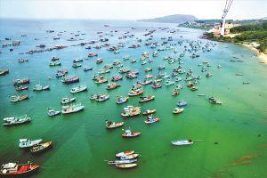 Nước mắm Phú Quốc - sự lấp lánh của mộc mạc