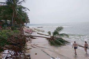 Hàng loạt resort ở du lịch Mũi Né bị sóng biển đánh sập