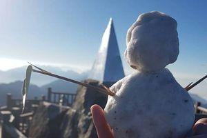 Hiếm gặp: Đắp người tuyết trên đỉnh Fansipan dù chưa vào đông