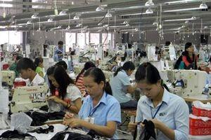 Thừa Thiên - Huế: Thúc đẩy xây dựng mô hình tích hợp về năng suất chất lượng