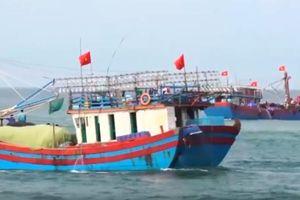 Chủ tàu cá gặp khó khăn trong trả nợ ngân hàng