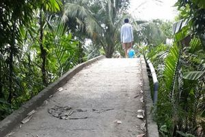 Va chạm trên cầu, bé gái đi xe đạp rơi xuống sông mất tích