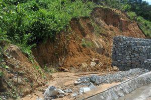 Bắc Trà My, Quảng Nam: Động đất 2.9 độ richter