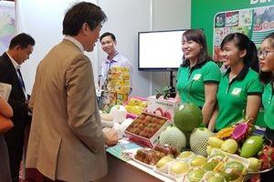 150 doanh nghiệp, tập đoàn kinh tế Nhật Bản tìm hiểu, đầu tư vào miền Tây