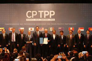 Hành trình của Việt Nam đến với CPTPP