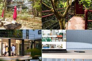 Kinh doanh homestay: 'Không chỉ mỗi căn nhà'