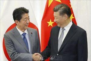 Nền tảng kinh tế 'sưởi ấm' quan hệ Nhật-Trung