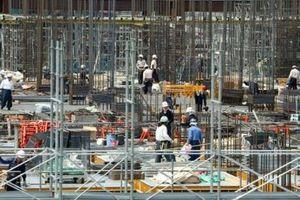 Đa số dân Nhật ủng hộ mở cửa thị trường lao động