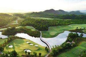 Bà Nà Hills Golf Club giành danh hiệu 'Điểm đến Golf tốt nhất châu Á'