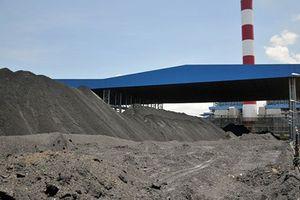 Bộ KH&CN lần đầu công bố tiêu chuẩn tro, xỉ nhiệt điện