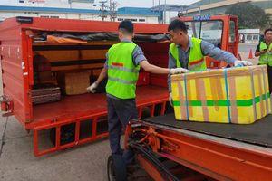 Sa thải 2 nhân viên bốc xếp ném hành lý của khách như ném gạch ở sân bay Tân Sơn Nhất