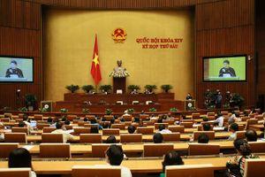 Tuần này Quốc hội xem xét việc sửa đổi toàn diện Luật Giáo dục