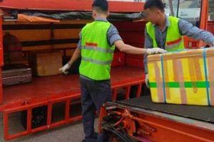 'Ném' hành lý của khách, 2 nhân viên hàng không bị sa thải