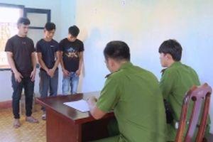 Băng nhóm trộm cắp nông sản số lượng lớn bị bắt