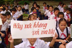 Hà Tĩnh quyết liệt phòng, chống ma túy trong trường học