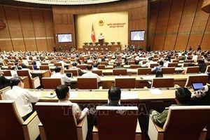 Hôm nay 5/11, Quốc hội thảo luận về Hiệp định CPTPP