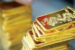 Giá vàng miếng nhích tăng