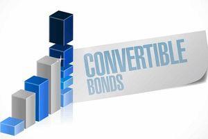 Chuyển đổi 245 trái phiếu, IBEWorth Pte. Ltd trở thành cổ đông lớn của Nam Long
