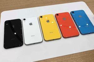Công nghệ 24h: iPhone XR có thể thất bại như iPhone 5C ở Việt Nam
