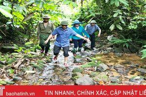 UN-REDD - bảo vệ rừng, cải thiện sinh kế cho người dân Hà Tĩnh