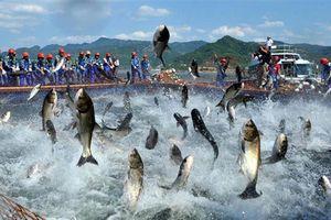 BẢN TIN TÀI CHÍNH-KINH DOANH: Việt Nam hưởng lợi nhiều thứ nhì từ CPTPP, xuất khẩu thủy sản đạt 7,2 tỷ USD