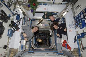 Phi hành gia ngủ như thế nào khi đang lơ lửng ngoài vũ trụ?