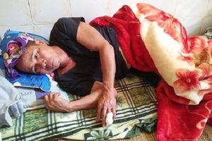 Nghệ An: Người đàn ông bị lợn rừng tấn công nhập viện